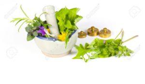 Bij de Arenborghoeve kunt u terecht voor Homeopatische middelen